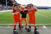 Luton Town football fans with mascots before the EFL Sky Bet League 1 match between Luton Town and Oxford United at Kenilworth Road, Luton, England on 4 May 2019.