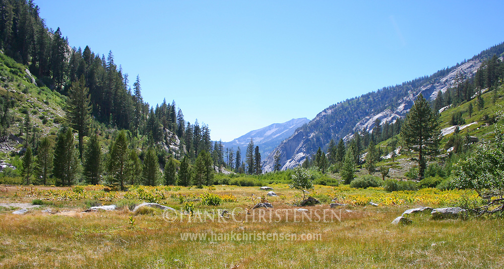 Castle Dome Meadow, Kings Canyon National Park