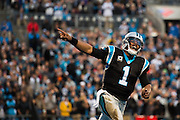 January 3, 2016: Carolina Panthers vs Tampa Bay Buccaneers. Newton, Cam celebrates at touchdown