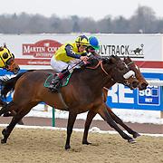 Mubtadi and Thomas Brown winning the 2.25 race