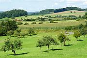Landschaft am Gumpener Kreuz bei Fürth, Odenwald, Hessen, Deutschland   Landscape at Gumpener Cross in Fürth, Odenwald, Hesse, Germany