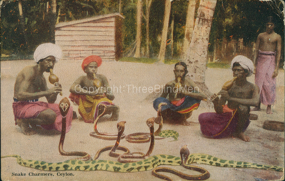 Old Post Card of Ceylon..Snake Charmers.