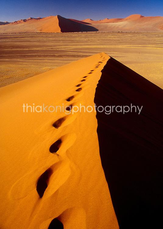 Lone footprints on top of orange sand dune, looking out to far away dunes on horizon, Sossusvlei, Namib desert, Namibia, Afria.