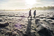 UNITED KINGDOM, London: 18 January 2017 Dog walkers make their way through a frosty Richmond Park during sunrise this morning. Temperatures dropped to -4C in certain parts of the capital last night causing wide spread frost. Rick Findler / Story Picture Agency