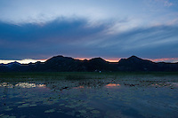 Sunset at Lake Skadar with Water caltrop (Trapa Natan), Lake Skadar National Park, Montenegro