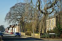 East Yorkshire VillageTickton, East Yorkshire Village