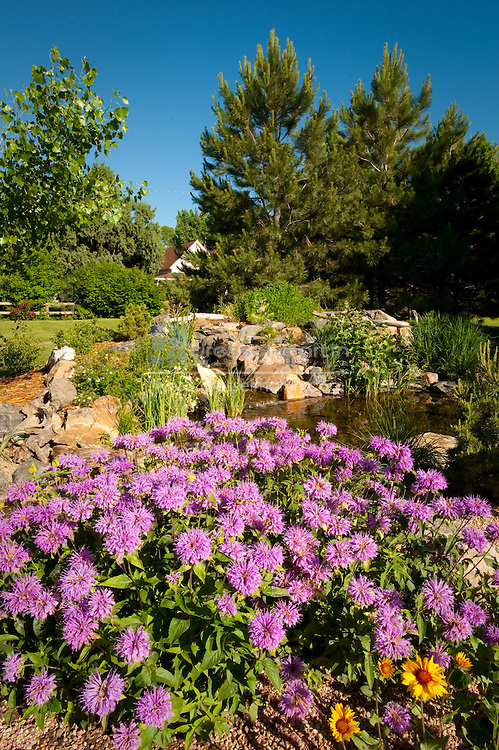 Denver Botanic Gardens at Chatfield