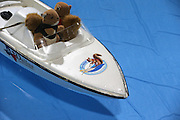Toronto, ON, Canada - <br /> Twiggy's driver and spotter are also squirrels, but just toys. Twiggy the Water Skiing Squirrel gets in some practice runs before her shows at the Toronto International Boat Show that runs January 8-17 at the Enercare Centre . at the Canadian National Exhibition in Toronto. Twiggy is an Eastern Gray squirrel. The Best family Louann and her son Chuck Jr. have been doing these shows for decades. This is Twiggy VIII, there is a Twiggy IX, they share shows. The squirrels always wear lifejackets as water safety is a theme of the show, <br /> ©Exclusivepix Media