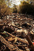 A heavy flow of discarded plastic bottles, tires, logs, and other debris about the length of a football field clogs the Santa Cruz River in the Sonoran Desert south ofTubac, Arizona, USA.  Debris lines and clogs the river in other areas of this riparian area as well.  The river, located in the foothills of the Santa Rita Mountains, runs seasonally with natural run off, but runs most of the year with reclaimed water.  The Juan Bautista de Anza National Historic Trail, a popular hiking trail run by the National Park Service, parallels the river in this area.