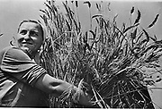 Female collectivew farmer smiling as she holds a sheaf of newly-harvested wheat. Krasnodar district, USSR, 1930-1940.