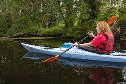 North America, United States, Washington, Seattle, woman kayaking in Washington Park Arboretum near Lake Union, MR