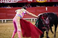 A bullfighter sticks his sword into the bull as the fight ends in the Plaza de Toros in Morelia, Mexico.