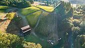 Colene Clemens 2018 aerials & harvest