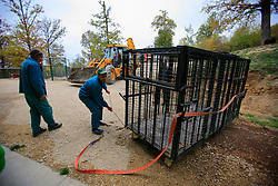 ROMANIA ZARNESTI 25OCT12 - The transport cage used to rescue bears from captivity is readied at the Zarnesti Bear Sanctuary in Romania, funded by WSPA.......With over 160 acres (70 hectares) spread over a wooded hillside, it is Romania's first bear sanctuary and today houses 67 bears rescued from ramshackle zoos and cages at roadside restaurants.......jre/Photo by Jiri Rezac / WSPA......© Jiri Rezac 2012