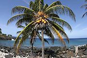Lapakahi State Park, Norht Kohala Coast, Island of Hawaii, Hawaii, USA<br />