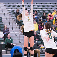 1st year setter Elizabeth Tooth (6) of the Regina Cougars during the home game on January 6 at Centre for Kinesiology, Health and Sport. Credit: Arthur Ward/Arthur Images