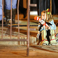 Adam Robison | BUY AT PHOTOS.DJOURNAL.COM<br /> Chloe Pettit, 4, from Houston, sits on the curb on Main Street in downtown Tupelo as she waits for the Tupelo Christmas Parade to start Friday night.
