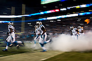 January 24, 2016: Carolina Panthers vs Arizona Cardinals. David Mayo