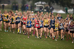 London, Ontario ---2012-11-10--- The women's race at the 2012 CIS Cross Country Championships at Thames Valley Golf Course in London, Ontario, November 10, 2012. .GEOFF ROBINS Mundo Sport Images