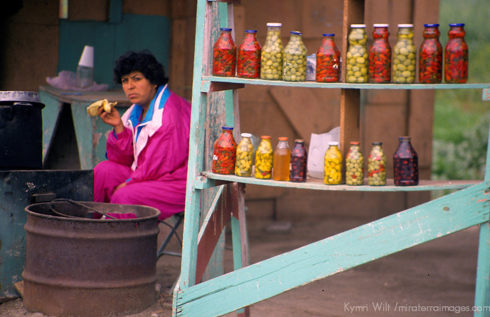 North America, Mexico, Baja California, Ensenada. A woman sells homemade tamales and pickled vegetables along the roadside of the Transpeninsular Highway in Baja.