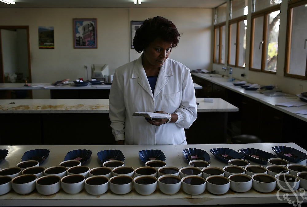 "An Ethiopian ""cupper"" or coffee taster, works with samples of various coffee batches in the cupping station of the giant warehouse of the Keffa Export Coffee Processing Plant February 21, 2007 in Addis Ababa, Ethiopia.  Cupper's job is to evaluate different coffees taste and unique characteristics and to guarantee quality and consistency throughout the processing stage. Ethiopian coffees from areas such as Sidamo, Hara, and Yirgacheffe are especially famous for their distinctive high quality, flavorful and aromatic coffee beans."