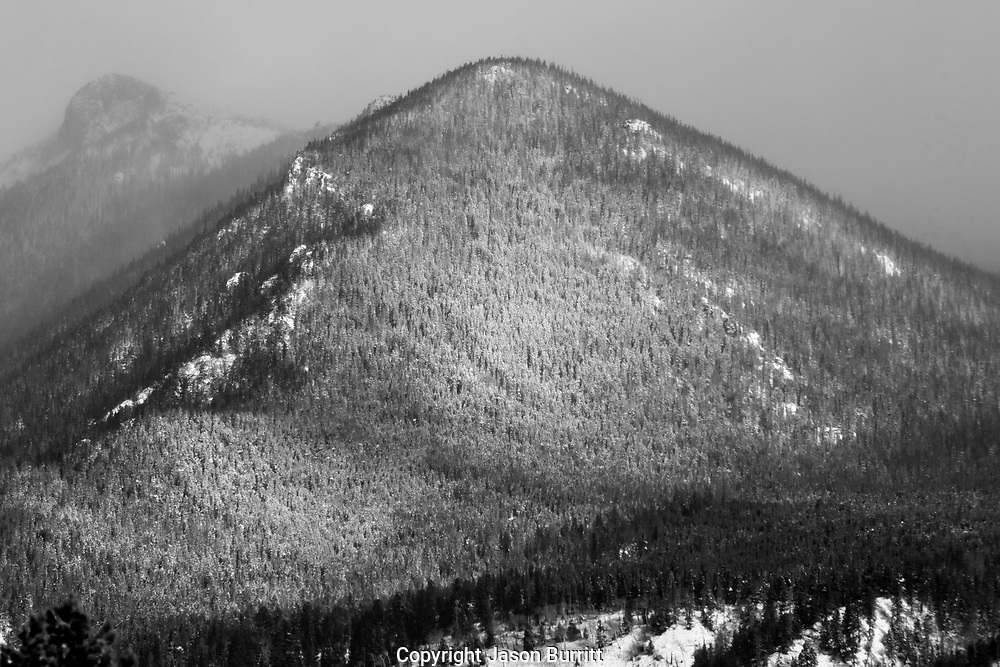 Beautiful hill covered in fresh snow in Rocky Mountain National Park