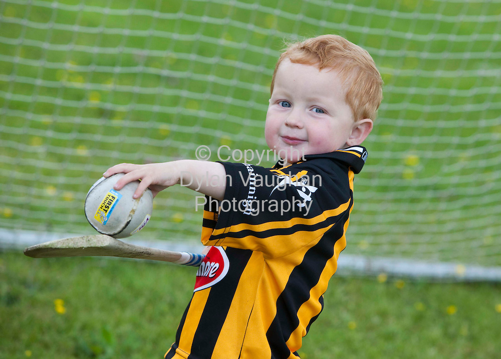18/6/2009.Ross Gormley aged 3 pictured hurling in his back garden in Kilkenny..Picture Dylan Vaughan