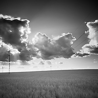 Infrared image of a wheat field and power line, Sanlucar la Mayor, Seville, Spain