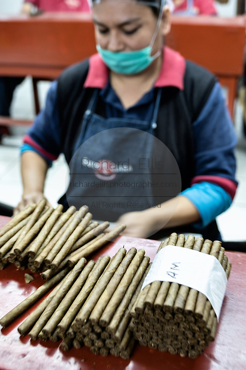 A cigarmaker called a torcedor stacks completed fine cigars at the Santa Clara cigar factory in San Andres Tuxtlas, Veracruz, Mexico. The factory follows traditional hand rolling using the same process since 1967 and is considered by aficionados as some of the finest cigars in the world.