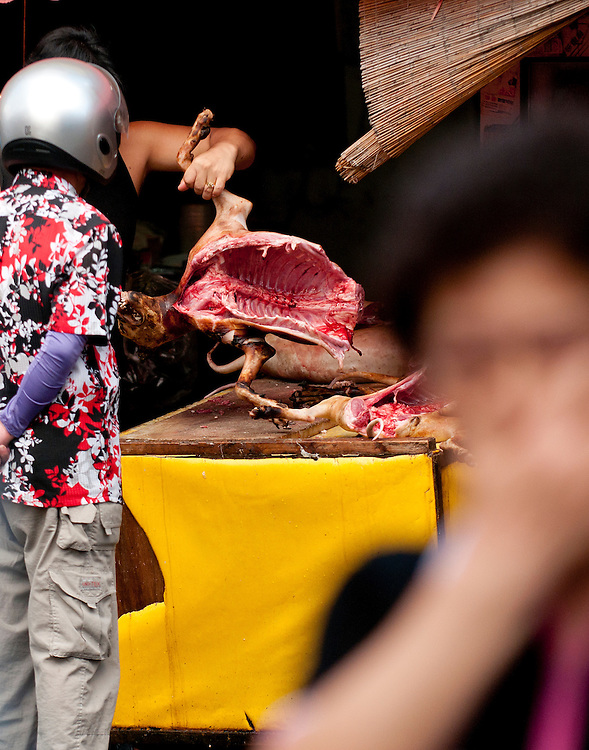 """Dogs are butchered for their meat in Busan, South Korea. August 13 is one of three """"boknal"""", considered the hottest days of the year, a day when eating dog meat is considered by some to have a cooling effect on the body. Though the practice continues, many South Koreans are opposed to eating dog."""