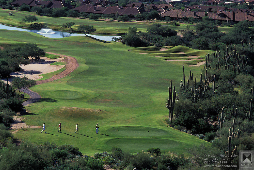 View from above of Desert golfing at its finest: Ventana Canyon Golf and Racquet Club, Tucson, Arizona..Media Usage:.Subject photograph(s) are copyrighted Edward McCain. All rights are reserved except those specifically granted by McCain Photography in writing...McCain Photography.211 S 4th Avenue.Tucson, AZ 85701-2103.(520) 623-1998.mobile: (520) 990-0999.fax: (520) 623-1190.http://www.mccainphoto.com.edward@mccainphoto.com.