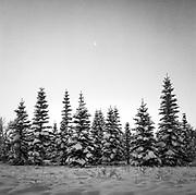 Winter in Calgary - Feb 2018