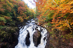 Dunkeld, Perthshire, Scotland, United Kingdom, 10th October 2018.  Spectacular autumn colours in the trees at The Hermitage a famous beauty spot near Dunkeld in Perthshire. Pictured is a waterfall on the River Braan.