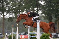 De Smet Stefaan (BEL) - Habibi van de Maltahoeve<br /> LRV Nationale wedstrijd jonge paarden <br /> Wortel 2013<br /> © Dirk Caremans