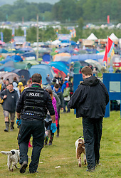 (c) Licenced to London News Pictures 31/07/2015. Kendal Calling Festival, near Penrith, UK. Police presence at Kendal Calling music festival in Cumbria after a festival goer died due to overdose. Two arrested, four in hospital. Photo credit : Harry Atkinson/LNP