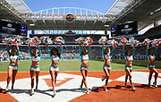 Sep 15, 2019; Miami Gardens, FL, USA;  Miami Dolphins cheerleaders perform during an NFL game between the Miami Dolphins and the New England Patriots at Hard Rock Stadium in Miami Gardens, FL. The Patriots beat the Dolphins 43-0. (Steve Jacobson/Image of Sport)