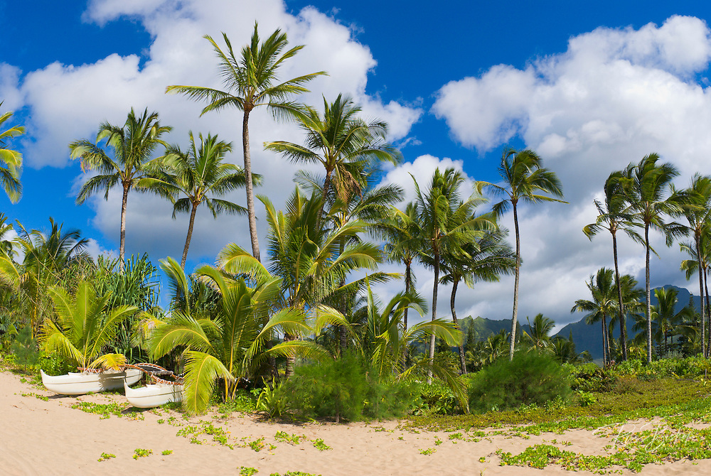 Palm trees and catamaran on Hanalei Beach, North Shore, Island of Kauai, Hawaii