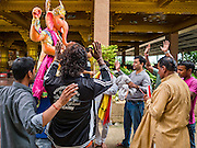 """05 SEPTEMBER 2016 - BANGKOK, THAILAND: Men pray while unloading a statue of Ganesha on the first day of Ganesha Chaturthi celebrations at Shiva Temple in Bangkok. Ganesha Chaturthi also known as Vinayaka Chaturthi, is the Hindu festival celebrated on the day of the re-birth of Lord Ganesha, the son of Shiva and Parvati. The festival, also known as Ganeshotsav (""""Festival of Ganesha"""") is observed in the Hindu calendar month of Bhaadrapada. The date usually falls between 19 August and 20 September. The festival lasts for 10 days, ending on Anant Chaturdashi. Ganesha is a widely worshipped Hindu deity and is revered by many Thai Buddhists. Ganesha is widely revered as the remover of obstacles, the patron of arts and sciences and the deva of intellect and wisdom.      PHOTO BY JACK KURTZ"""