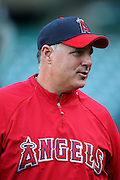 ANAHEIM, CA - APRIL 22:  Manager Mike Scioscia #14 of the Los Angeles Angels of Anaheim chats with the media before the game against the Detroit Tigers at Angel Stadium on Wednesday, April 22, 2009 in Anaheim, California.  The Tigers defeated the Angels 12-10.  (Photo by Paul Spinelli/MLB Photos via Getty Images) *** Local Caption *** Mike Scioscia