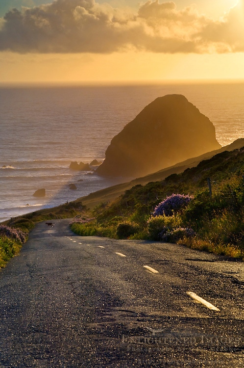 Sunset over the Mattole Road, at westernmost point of paved road in California, Cape Mendocino, Lost Coast, California