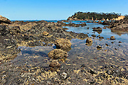 low tide at taiharuru