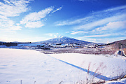 Iwaki mountain also called the sister Mt. Fuji. Located in Aomori Prefecture in Northern Honshu, Japan. In the foreground are rice paddies covered with snow. Beyond the rice fields are apple trees.