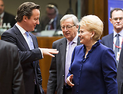 British Prime Minister David Cameron (L) talks with Lithuanian President Dalia Grybauskaite ahead of the EU summit in Brussels, capital of Belgium, March 14, 2013. Photo by Imago / i-Images...UK ONLY.