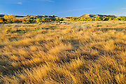 autumn on the prairie<br /> Saskatchewan Landing Provincial Park<br /> Saskatchewan<br /> Canada