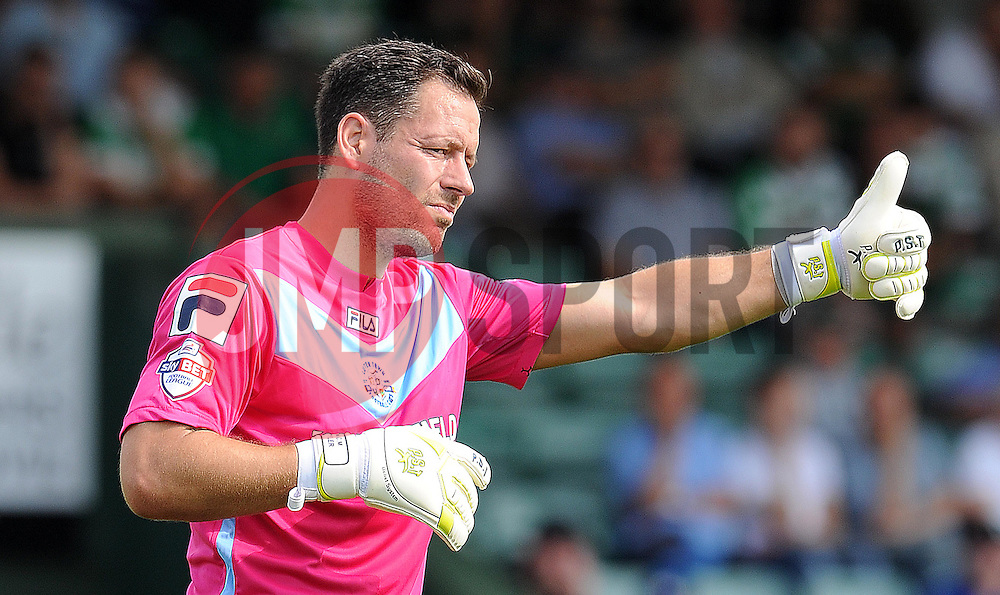Mark Tyler of Luton Town - Photo mandatory by-line: Harry Trump/JMP - Mobile: 07966 386802 - 22/08/15 - SPORT - FOOTBALL - Sky Bet League Two - Yeovil Town v Luton Town - Huish Park, Yeovil, England.