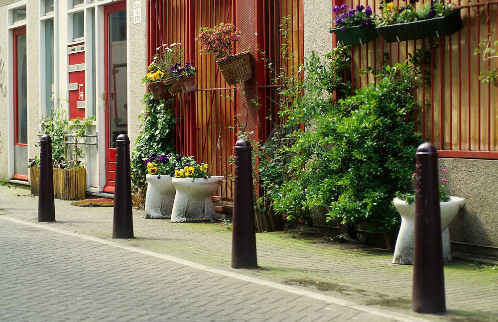 geveltuinen in Amsterdam, special gardens