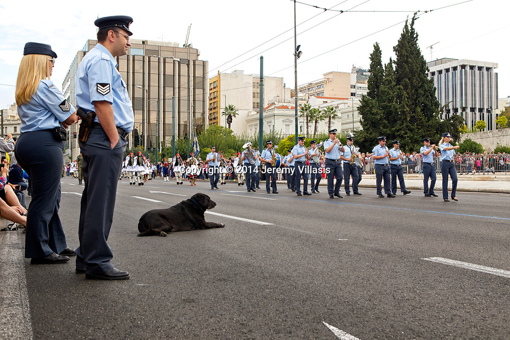 A dog watches the marching band during the Changing of the Guard ceremony in front of the Old Royal Palace in Syntagma Square, Athens. The official ceremony is held every Sunday at 11 AM.