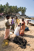 Family members bag up the catch before transporting it to the  market south of Kovalam.