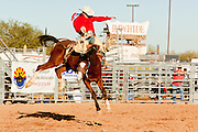 26 NOVEMBER 2011 - CHANDLER, AZ:   CLINT PHILLIPS competes in the saddle bronc riding at the Grand Canyon Pro Rodeo Association (GCPRA) Finals at Rawhide Western Town in west Chandler, AZ, about 20 miles from Phoenix Saturday. The GCPRA Finals is the last rodeo of the GCPRA season. The GCPRA is a professional rodeo association based in Arizona.      PHOTO BY JACK KURTZ