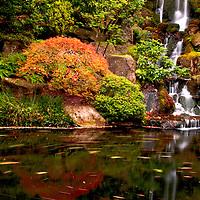 Waterfall at Japanese Garden